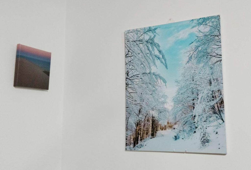 due quadri per la cucina