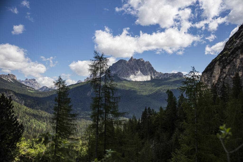 panorama dal sentiero 217